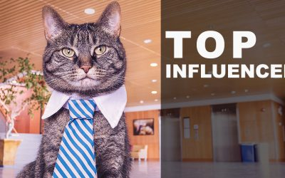 """Top Influencer"": chi sono e come trovarli"
