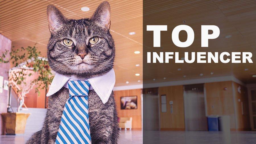 top influencer