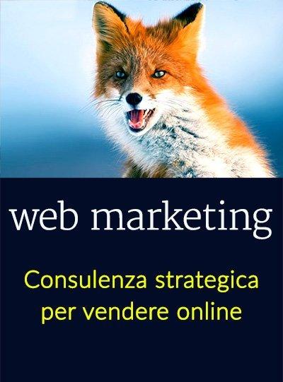 consulenza web marketing