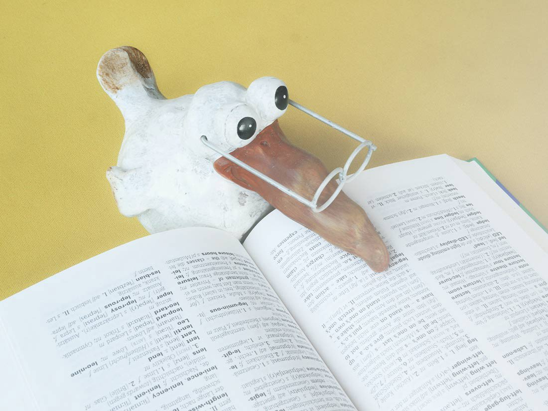 papera con dizionario